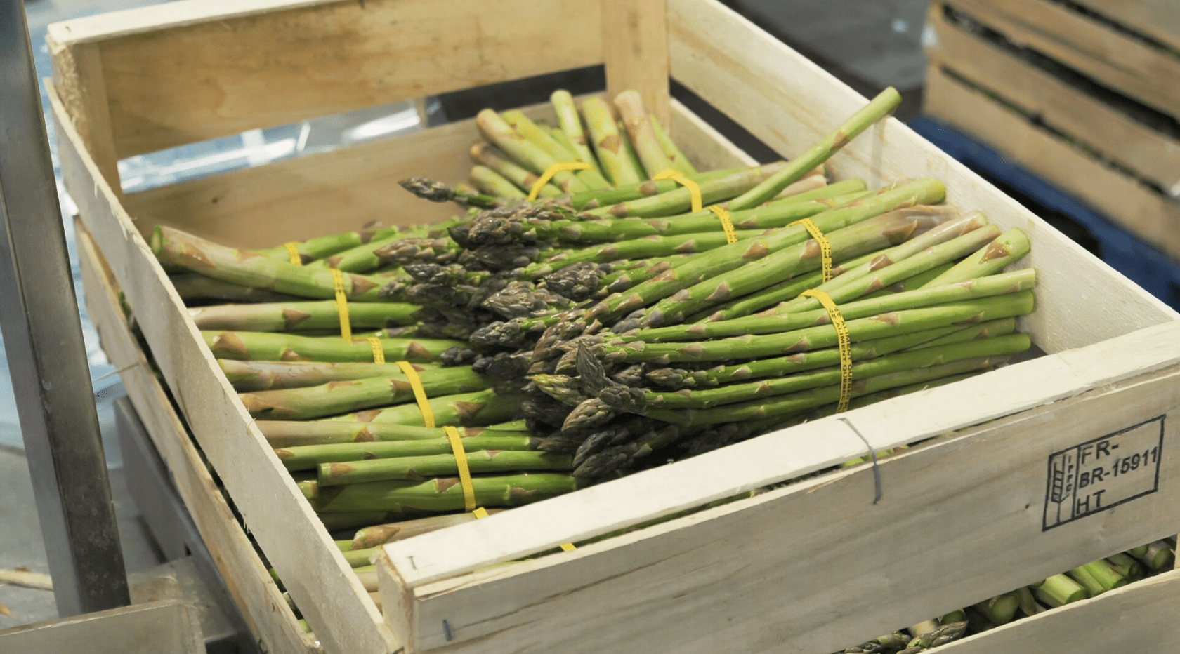 Asparagus: The vegetables that announce the arrival of summer