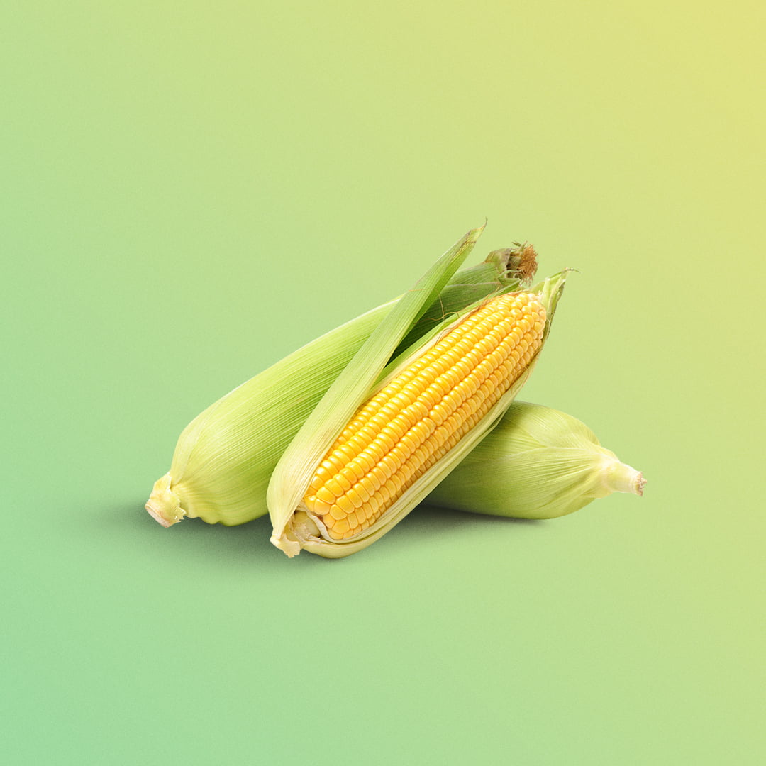 Corn from here