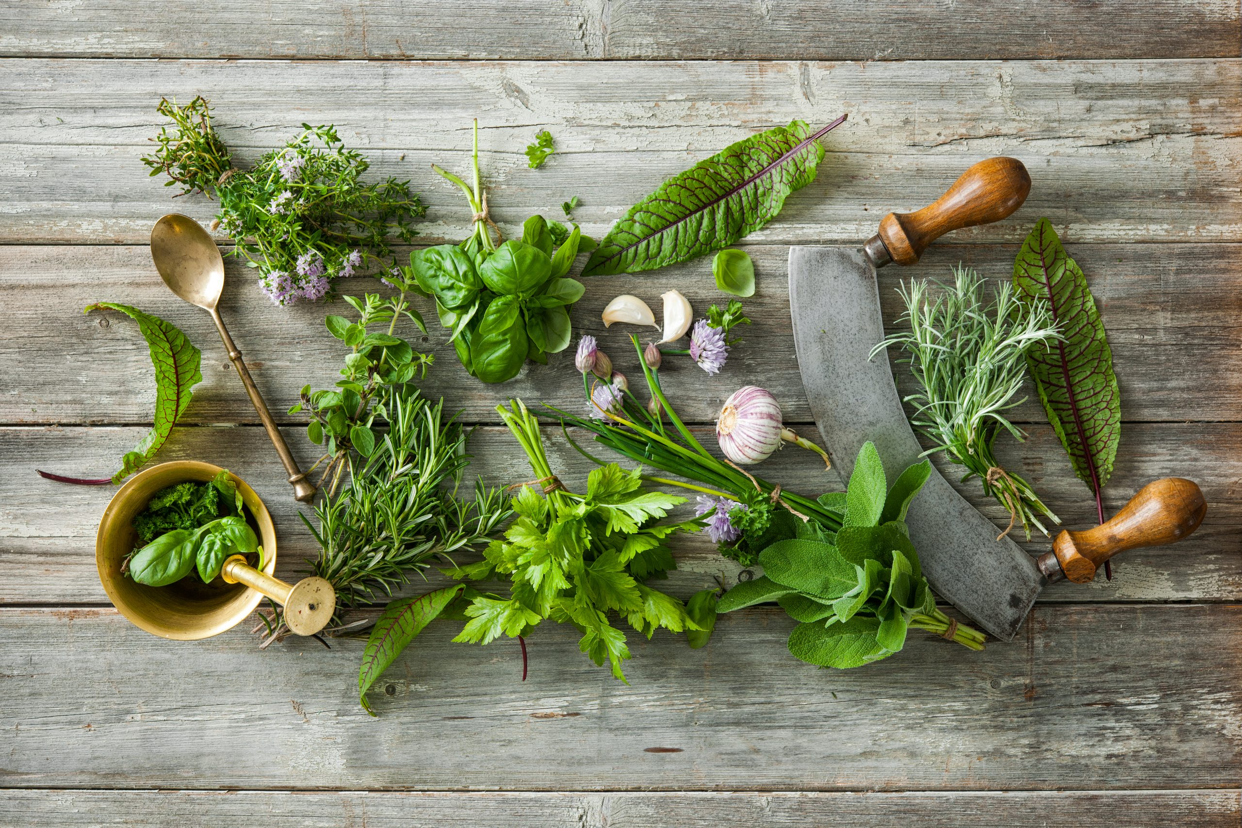Fresh herbs: How to use them and preserve them